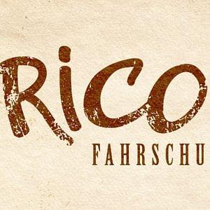 Rico's Fahrschule