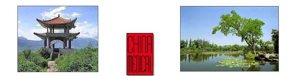 China Medical GmbH