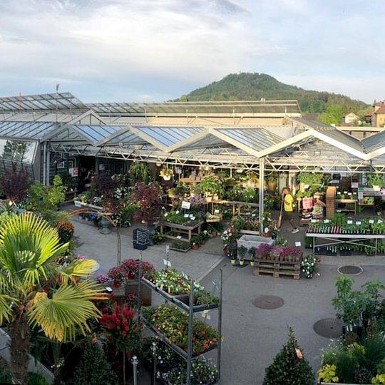Gärtnerei mit Verkauf