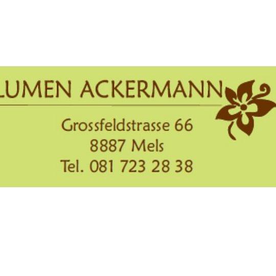 Ackermann Urs
