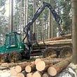 Porteur forestier 1110D