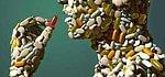 Entretien de polymedication