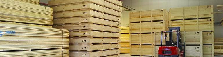 Fiore Nicola GmbH