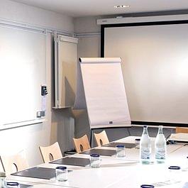 Salles de conférences entièrement équipées (système Barco, beamer, flipchart etc.) pour organiser séminaires et congrès. Hôtel idéal pour concilier des activités de business ou loisirs.