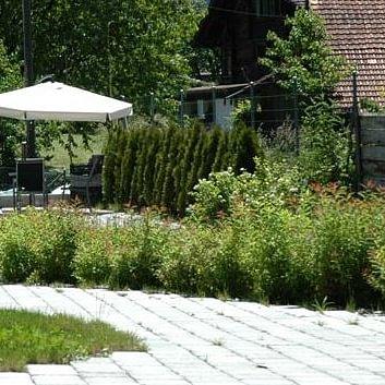 Gartenbau Gärtnerei Blumengeschäft Brienz Berner Oberland