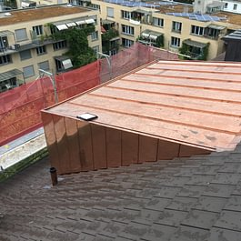 Spengler und Flachdacharbeiten Landskronstrasse Basel.