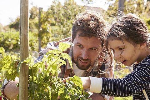 Familienhypothek - Finanzielle Entlastung für Familien