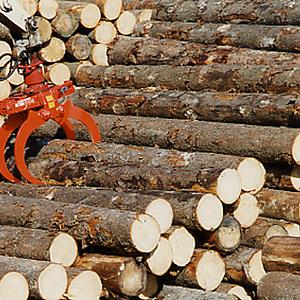 Holzgreifer für schweren Einsatz