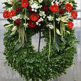 Blumengeschäft Andreas Zweerus , Bassersdorf