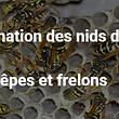 ABA, R.Python