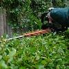 Heckenschneiden gehört zum Gartenunterhalt in der Hauswartung