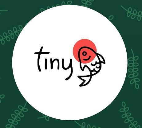 Tiny Fish AG