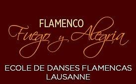 Fuego y Alegria