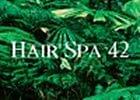 Hairspa 42