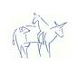 Tierärztliche Praxis Sils