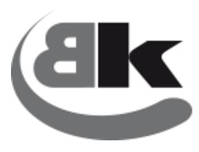 B. Kaufmann AG
