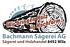 Bachmann Sägerei AG