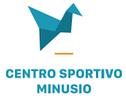CSM Centro Sportivo Minusio SA