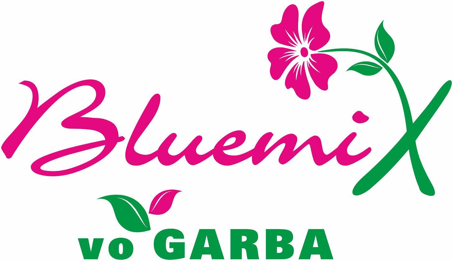 Bluemix von Garba