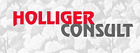 Holliger Consult GmbH