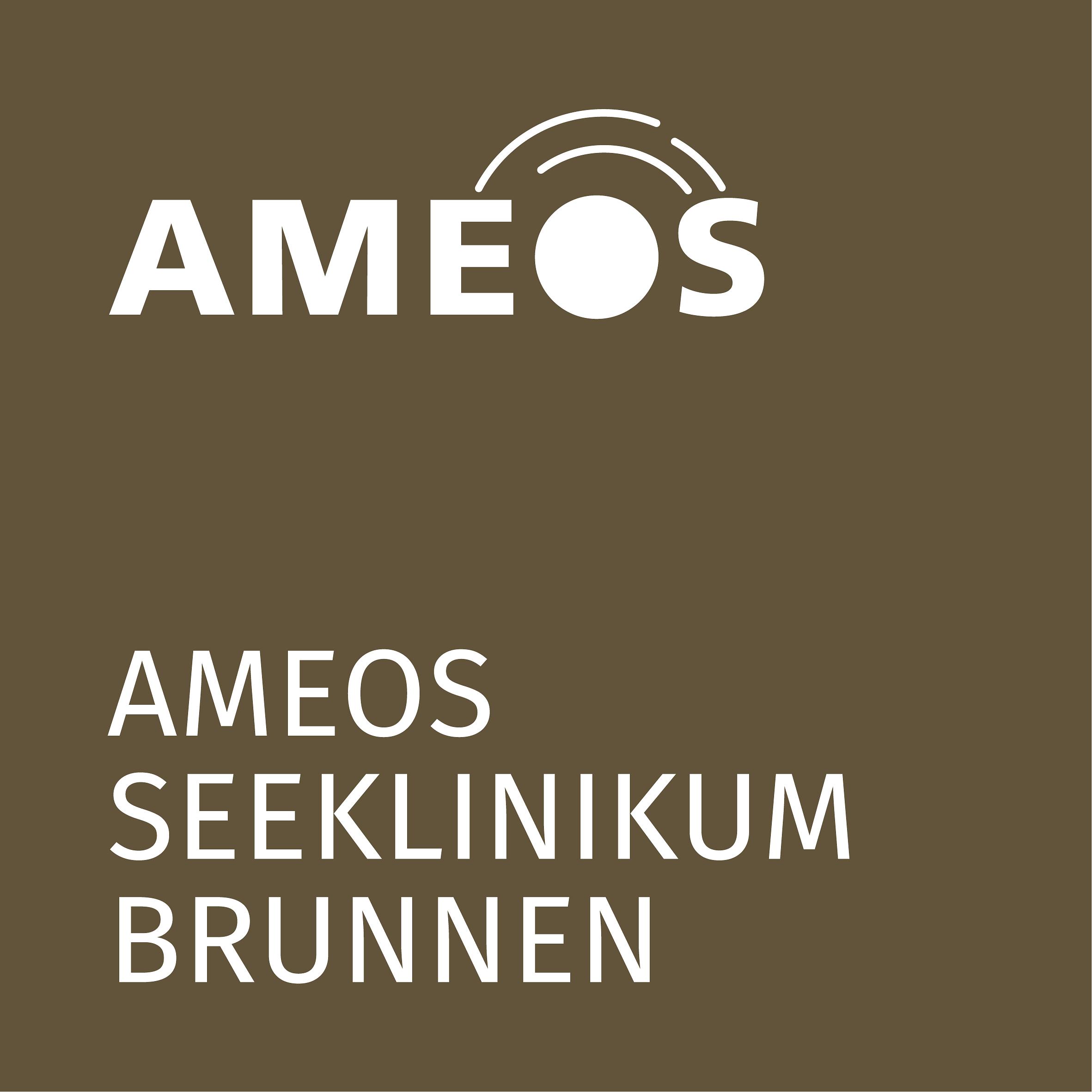 AMEOS Seeklinikum Brunnen