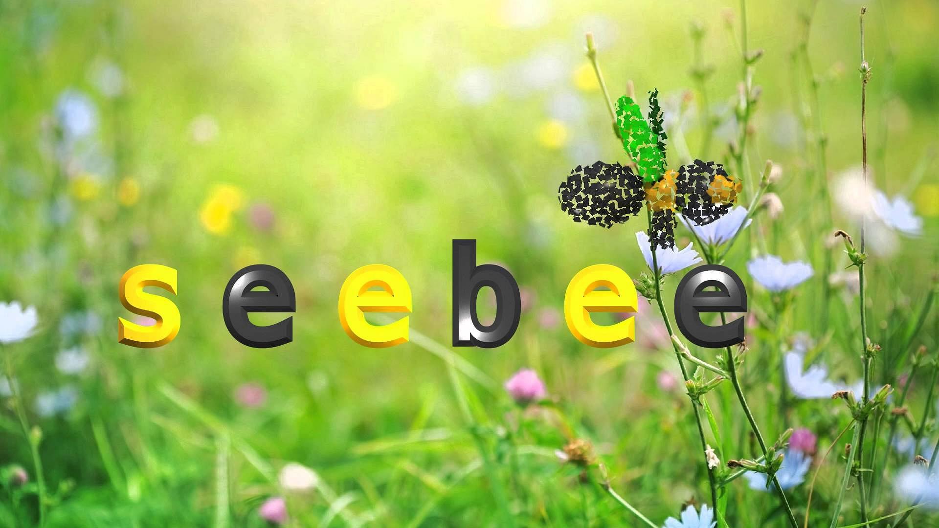 Seebee AG