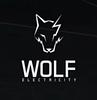 Wolf electricité SA