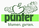Pünter