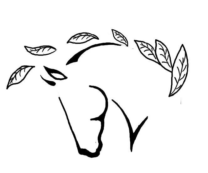 Ecurie des Lilas - Centre de soins énégétiques et de l'Âme par le Cheval