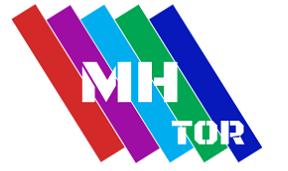 MH Tor Plâtrerie Sàrl