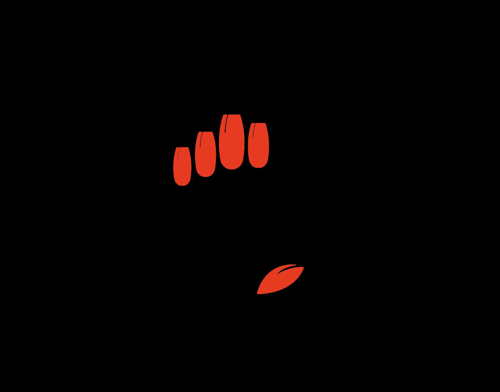 Onglerie Eugénia's Nails