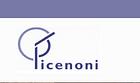 Picenoni Guido Falegnameria Sagl