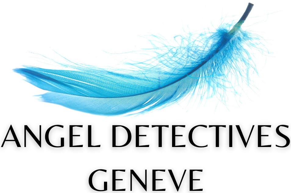 ANGEL DETECTIVES SARL
