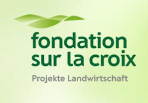 Fondation Sur-la-Croix