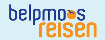 Belpmoos Reisen AG