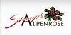 Alpenrose-Stump's Alpenrose