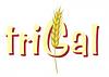 Trigal