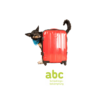 abc- Bettwanzen Spürhunde & Suchhunde SCHWEIZ