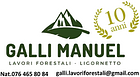 Galli Manuel