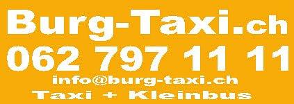 Burg Taxi AG