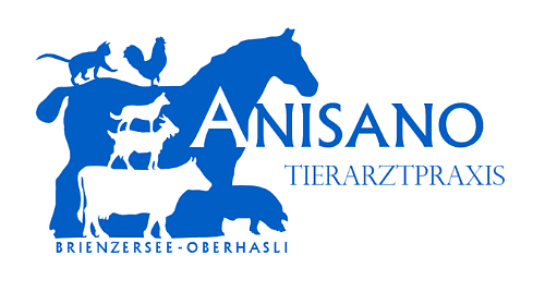 Anisano Tierarztpraxis
