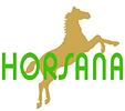 HORSANA Reitsport AG