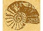Pidoux et Cie pierre marbre