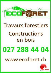 Triage forestier