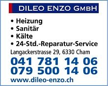 dileo enzo gmbh in cham. Black Bedroom Furniture Sets. Home Design Ideas