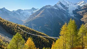 Hängebrücken in der Schweiz
