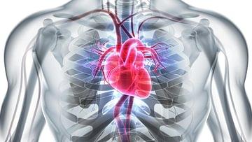 cardio (3)