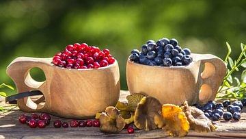 Paleo-Diät, Essen wie in der Steinzeit