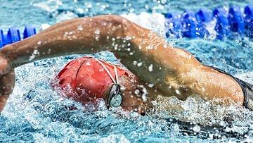 schwimmen (2)