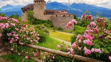 Die zehn schönsten Burgen